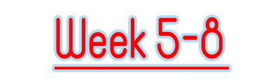 week5